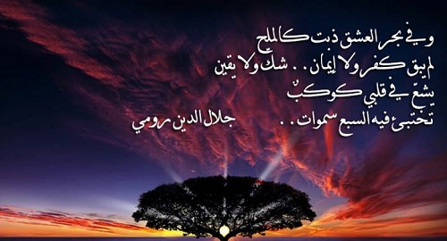 جلال الدين محمد البلخي الرومي 00012