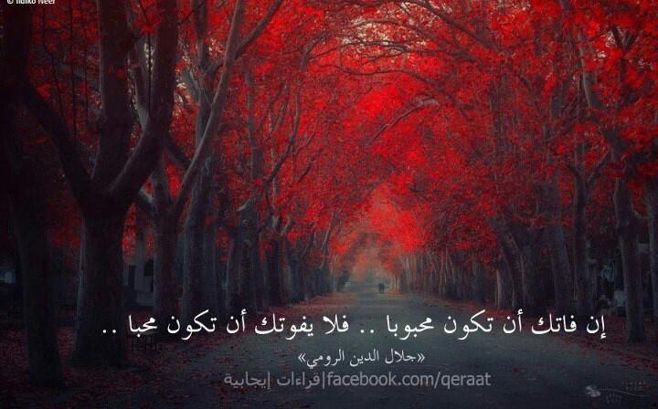 جلال الدين محمد البلخي الرومي 00017