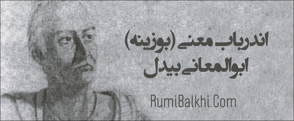 اندرباب معنی بوزینه ابوالمعانی بیدل