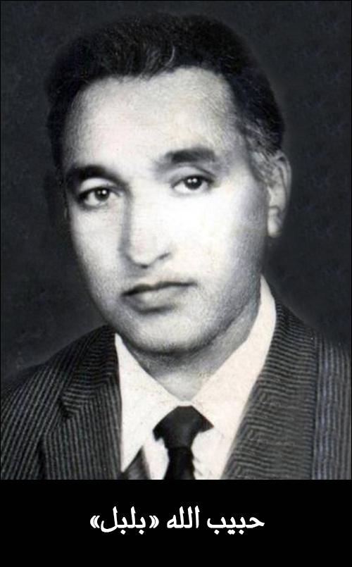 حبیب الله بلبل