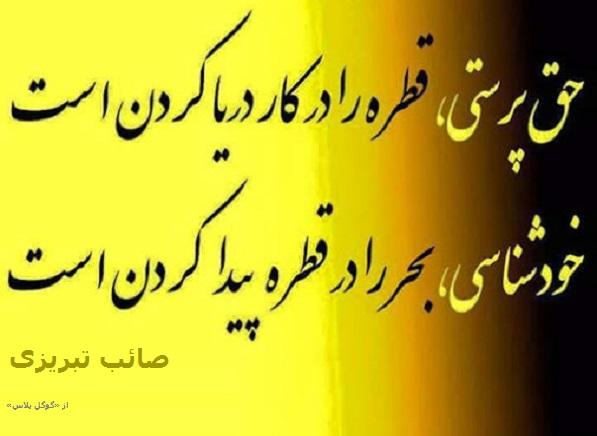 حق پرستی قطره را در کار دریا کردن است صائب تبریزی