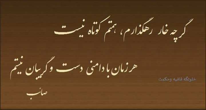 گر چه خار رهگذرام همتم کوتاه نیست صائب تبریزی