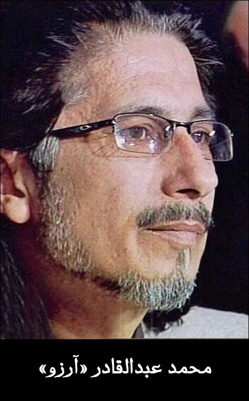 محمد عبدالقادر آرزو