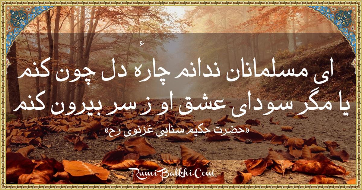 ای مسلمانان ندانم چارهٔ دل چون کنم