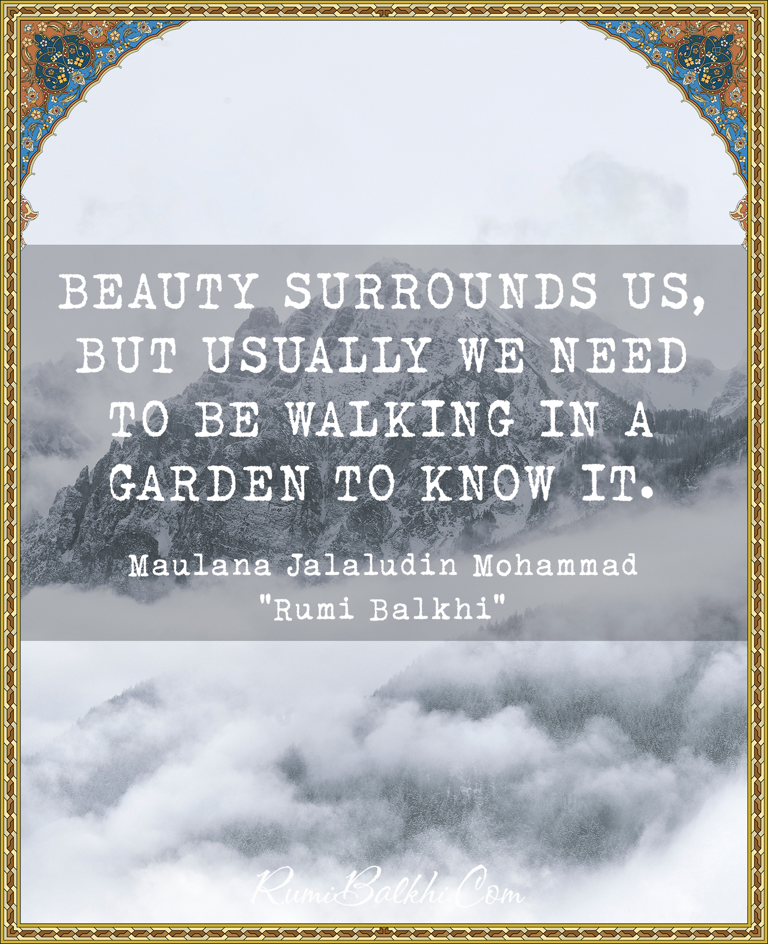 Beauty Surrounds Us But Usually We Need To Be Walking In A Garden To Know It