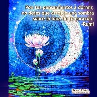 Poesia de Rumi en Español 000119
