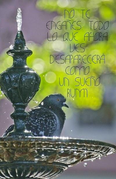 Poesia de Rumi en Español 000153