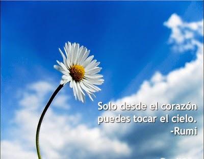 Poesia de Rumi en Español 00042