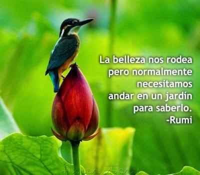 Poesia de Rumi en Español 00094