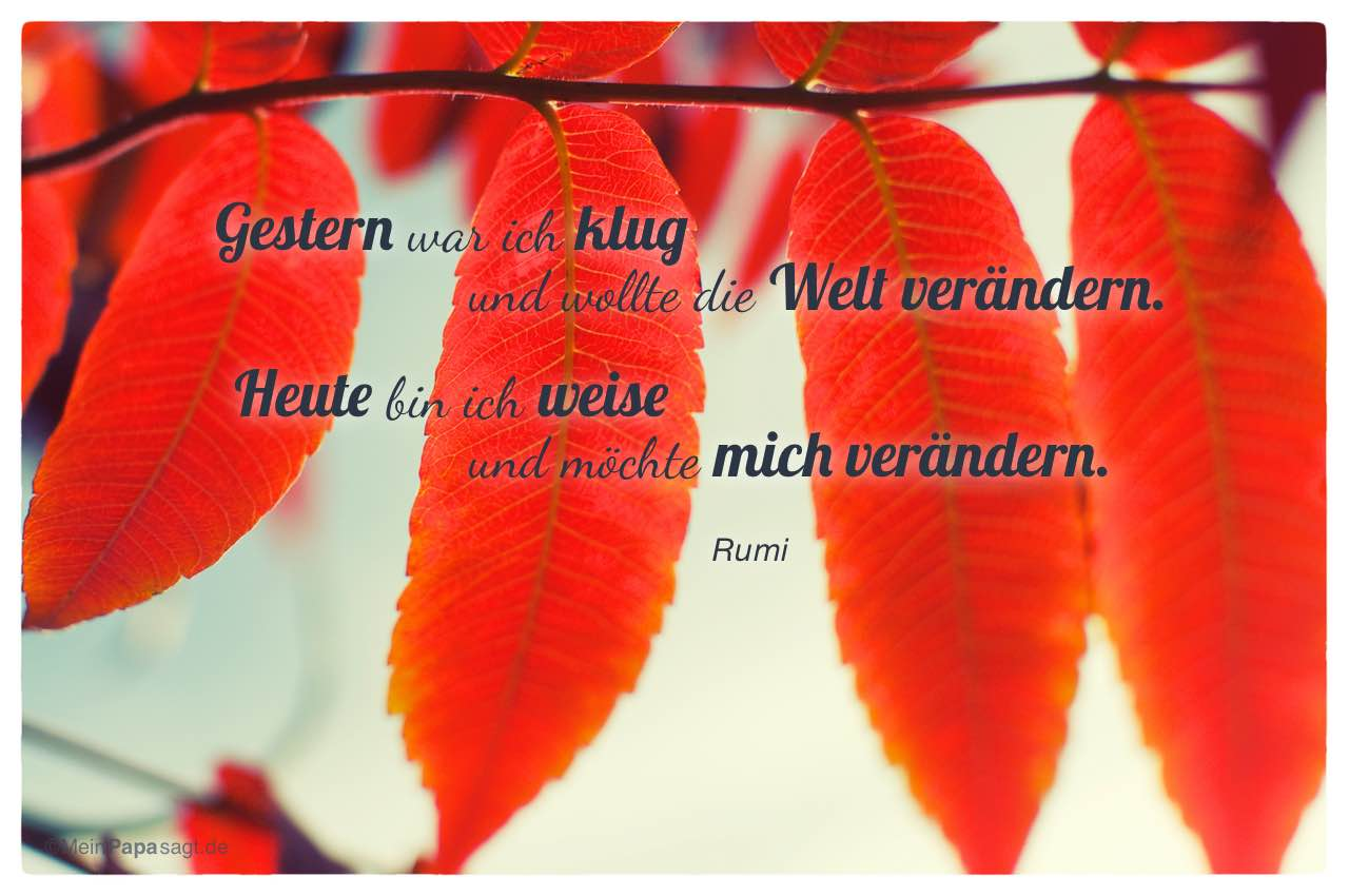 Rumi Zitate 00019