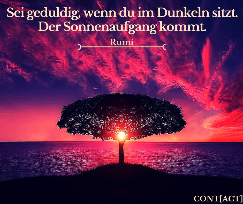Rumi Zitate Geduld Leben Zitate